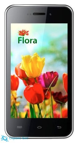 Flora | Сервис-Бит